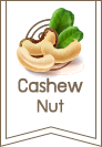 home_cashew2_footer_logo